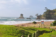 Beach. Beautiful beach in New Zealand Stock Image