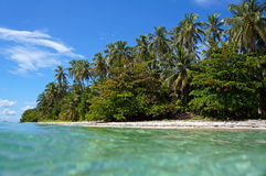 Beach with beautiful tropical vegetation Stock Photo