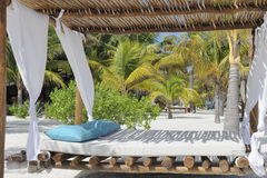 Beach bed on white sand Stock Photos