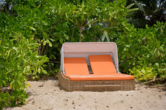 Beach bed on white sand among palm trees Royalty Free Stock Photos