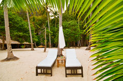 Beach Beds Behind Palm Stock Image