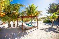 Beach beds and hammocks among palm trees at Royalty Free Stock Image
