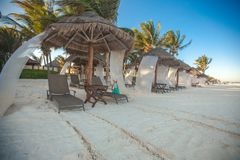 Beach beds near big palmtree at tropical exotic Royalty Free Stock Photography