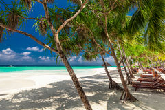 Beach beds in the shade of palm trees on tropical beach in Maldi Royalty Free Stock Image