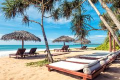 Beach beds with umbrellas on the tropical beach. Beach beds with umbrellas on the tropical sunny beach in Sri Lanka. Scenic idyllic view of a sand beach with Royalty Free Stock Photography