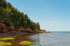 Beach at Belmont Provincial Park Stock Images