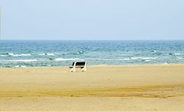 Beach bench stock photo