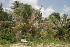 Beach bench. Deserted beach in Koh samui Stock Photo