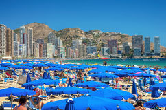 Beach of Benidorm stock image