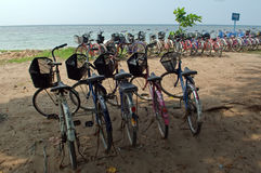 Beach bicycle rent Stock Image