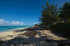 Beach on Bimini Royalty Free Stock Image