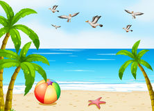 A beach with birds Stock Images