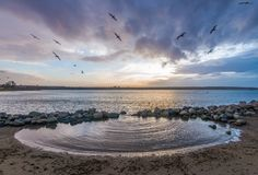 Beach, Birds, Clouds royalty free stock photos