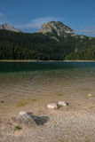 Beach of the black lake, Durmitor national park, Montenegro. Beach of the black lake, Durmitor, Montenegro Stock Photos