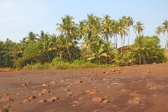 Beach with black sand and palm trees. Dark brown volcanic sand a. Nd beach in India, GOA. Large round stones on the beach Royalty Free Stock Photo