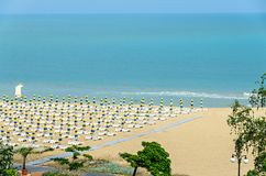 Beach of Black Sea from Albena, Bulgaria with golden sands, blue. Clear  water, green trees Stock Images