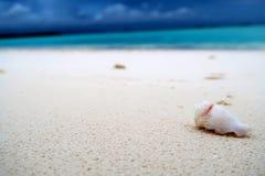 Beach, Blue, Blur Royalty Free Stock Photos