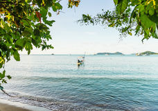 Beach and blue sea in morning light. Beach and blue sea with tropical tree on blue sky background in morning light Royalty Free Stock Image