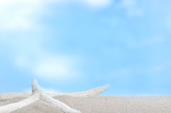 Beach and blue sky in background Royalty Free Stock Images
