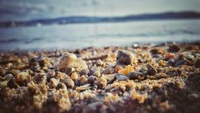 Beach, Blur, Close-up Stock Photos