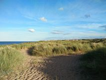 Beach at Blyth England. Grasses on the beach at Blyth in England. Light brown of sand. Blue sky with little clouds. Dark blue water of the sea. Faraway town. It Stock Photo