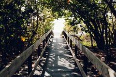 Beach, Boardwalk, Bridge, Daylight royalty free stock photo
