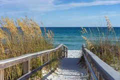 Beach Boardwalk with Dunes and Sea Oats. Sandy boardwalk path to a snow white beach on the Gulf of Mexico with ripe sea oats in the dunes Stock Photography