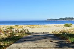 Beach with boardwalk, golden sand and vegetation in sand dunes. Blue sea, sunny day, Galicia, Spain. royalty free stock photo