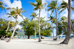 Beach on Bora Bora Royalty Free Stock Photos