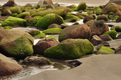 Beach boulders royalty free stock images