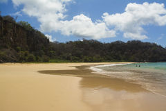 Beach In Brazilian Island Stock Photos