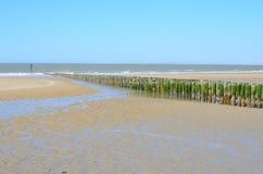 Beach in Breskens, Zeeland. Beach with wooden breakwaters in Breskens, Zeeland royalty free stock images