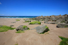 Beach in Brittany Stock Photography