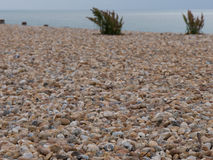 On the beach. Brown stones, gray water, surf breakers royalty free stock photography