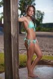 Beach Brunette Stock Images