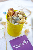 Beach bucket with seashells Stock Photography