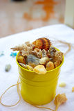 Beach bucket with seashells Royalty Free Stock Images