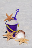 Beach Bucket with Starfish and Sea Shell Royalty Free Stock Photos
