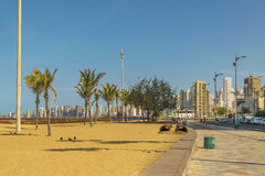 Beach and Buildings of Fortaleza Brazil. FORTALEZA, BRAZIL, DECEMBER - 2015 - Cityscape scene depicting the coastline and beach surrounded by modern modern royalty free stock image