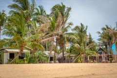 Beach bungalow with coconut trees Stock Image