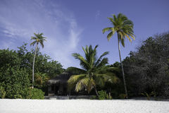 Beach Bungalow on a tropical island, Maldives Stock Image