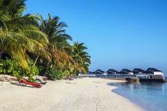 Beach bungalows, Maldives Stock Image