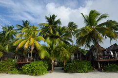 Beach Bungalows on Polynesian tropical Island Royalty Free Stock Image