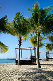 Beach Cabana Bed And Palm Trees Royalty Free Stock Images