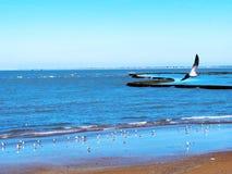 Beach of Cadiz. Andalusia. Spain Royalty Free Stock Photo
