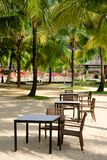 Beach cafe among palm trees on the sand. The restaurant has chairs and tables among the palm trees in the jungle of Thailand on the sand amid ostalnije royalty free stock images