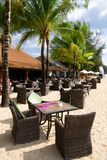 Beach cafe with tables and chairs on the sand. Among the green palm trees in the bright sun without people stock photos