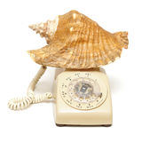 The Beach is Calling Royalty Free Stock Photo