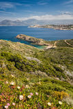 Beach, Calvi, sea and mountains from La Revellata in Corsica. Blue skies over the The citadel of Calvi with the flowering maquis of La Revellata in the Stock Photos