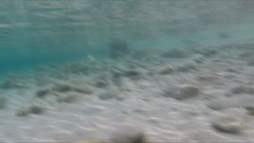 Beach camera comes out of the water stock video footage